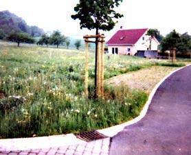 Wohngebiet »Im Trieb/Klosterweg (Wittershausen)«