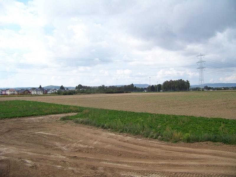 Albert-Weil-Straße Richtung Nord-Westen