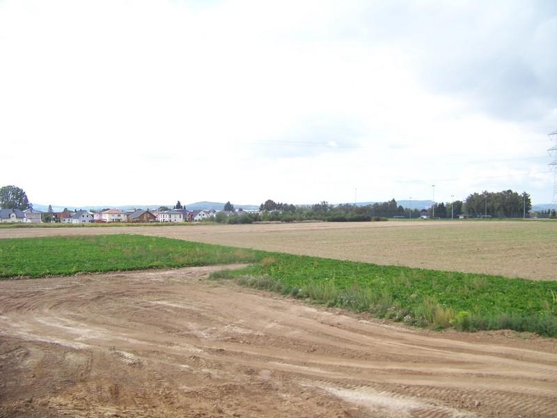 Albert-Weil-Straße Richtung Westen