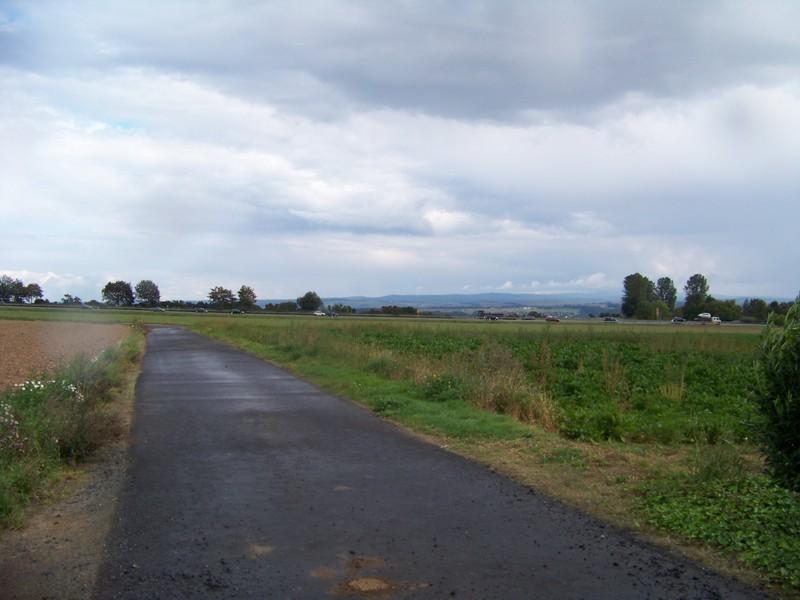 Anna-Ohl-Straße