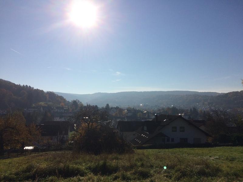 Ausblick auf die Stadt Bad Orb