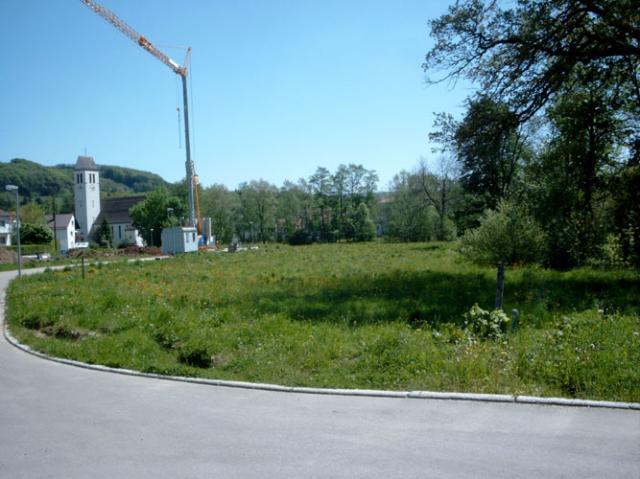 Wohngebiet »Brühl, OT Reichenbach«