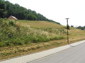 Mischgebiet »Pfaffenholz, OT Ernsbach«