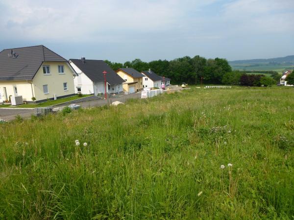 Wohngebiet »Große Waldwiese«