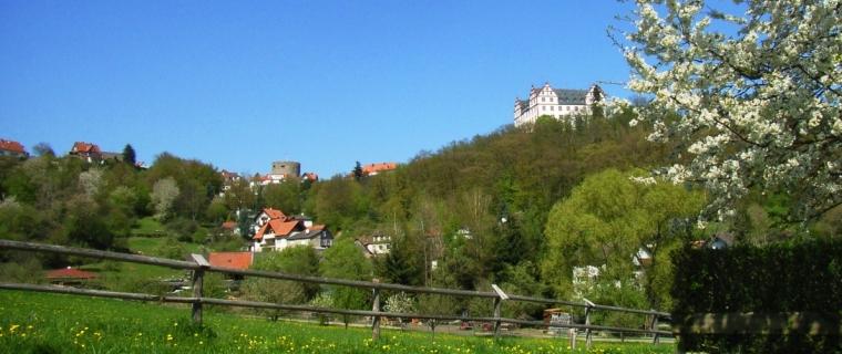 Blick auf Schloss Lichtenberg (Foto: S.Kühn)