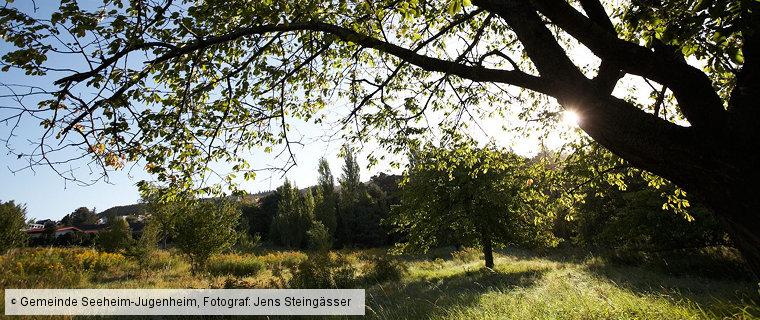 Naherholung in Seeheim-Jugenheim