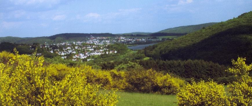 Blick zum benachbarten Aartalsee
