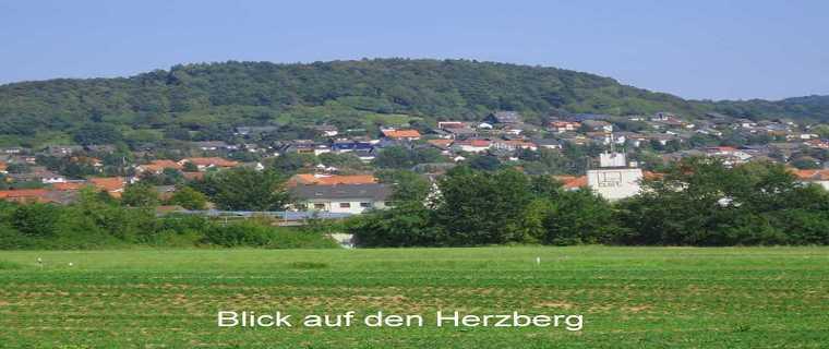 Blick auf den Herzberg