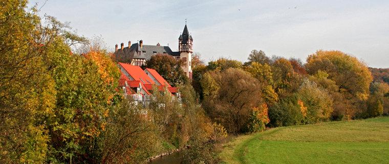 Blick zum Schloss in Büdesheim