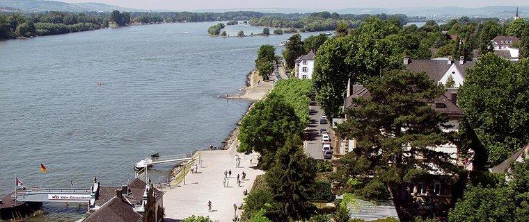 Blick auf Eltville (Foto: Dieter Schenk)