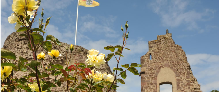 Burgruine Dreieich