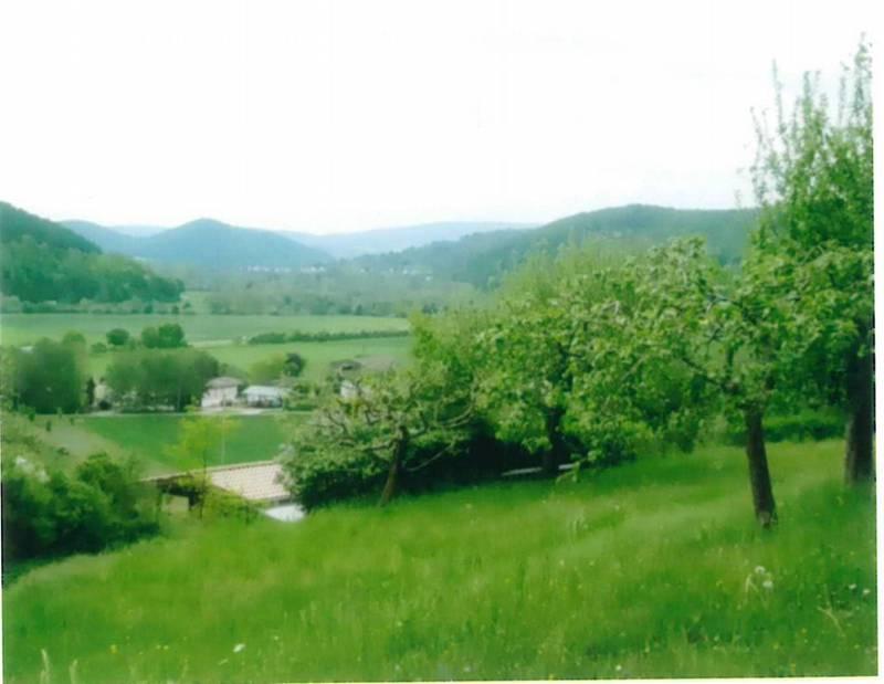 Berggrundstück am Dietzelsgraben - Wanfried